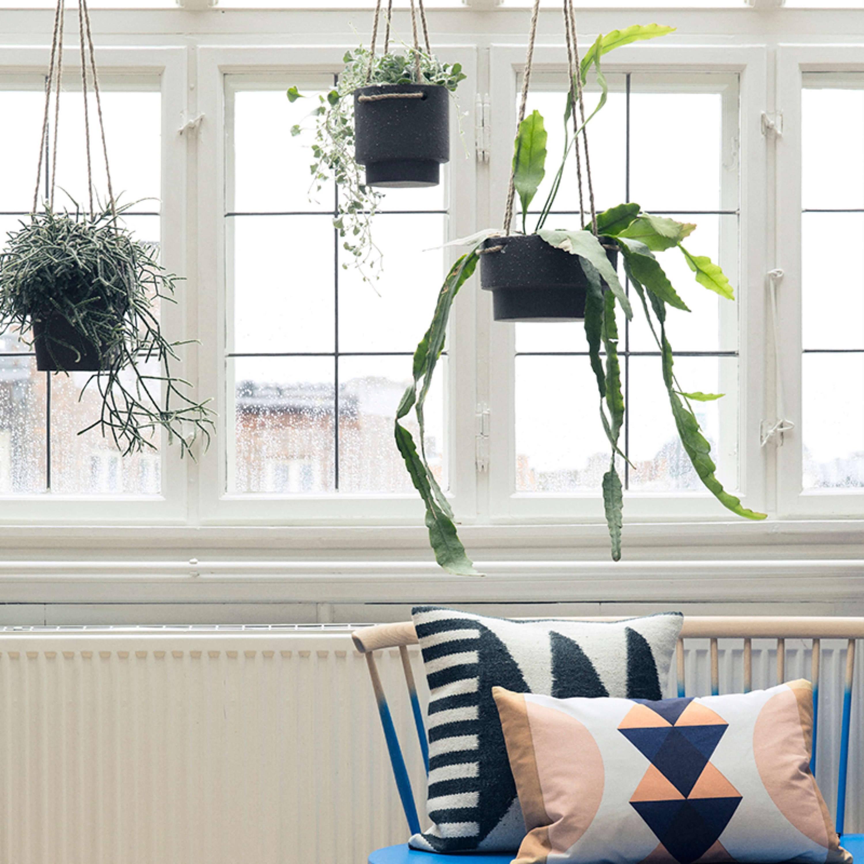 Modern Planters - Indoor