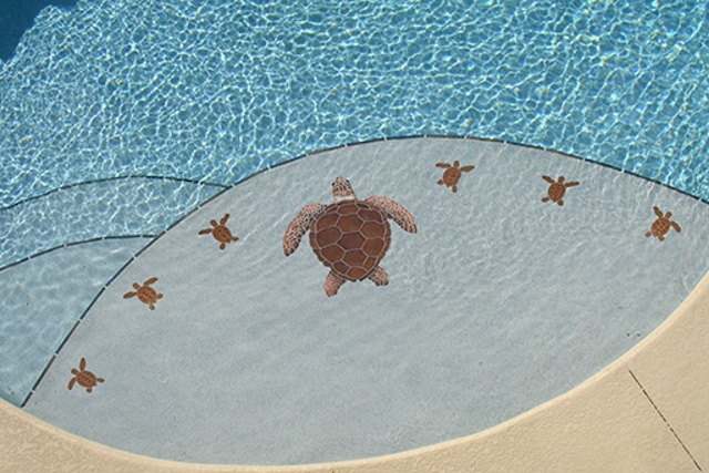 TLOBROL - Loggerhead Turtle Brown Pool Mosaic