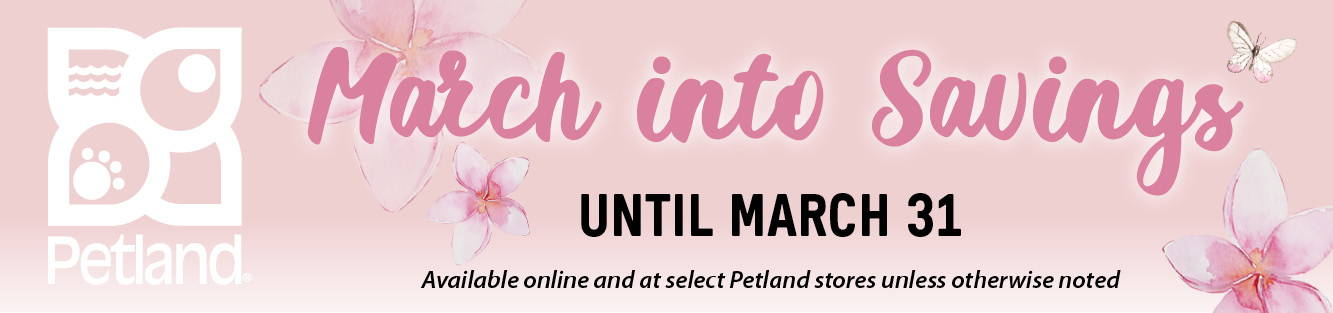March into Savings until March 31, 2021