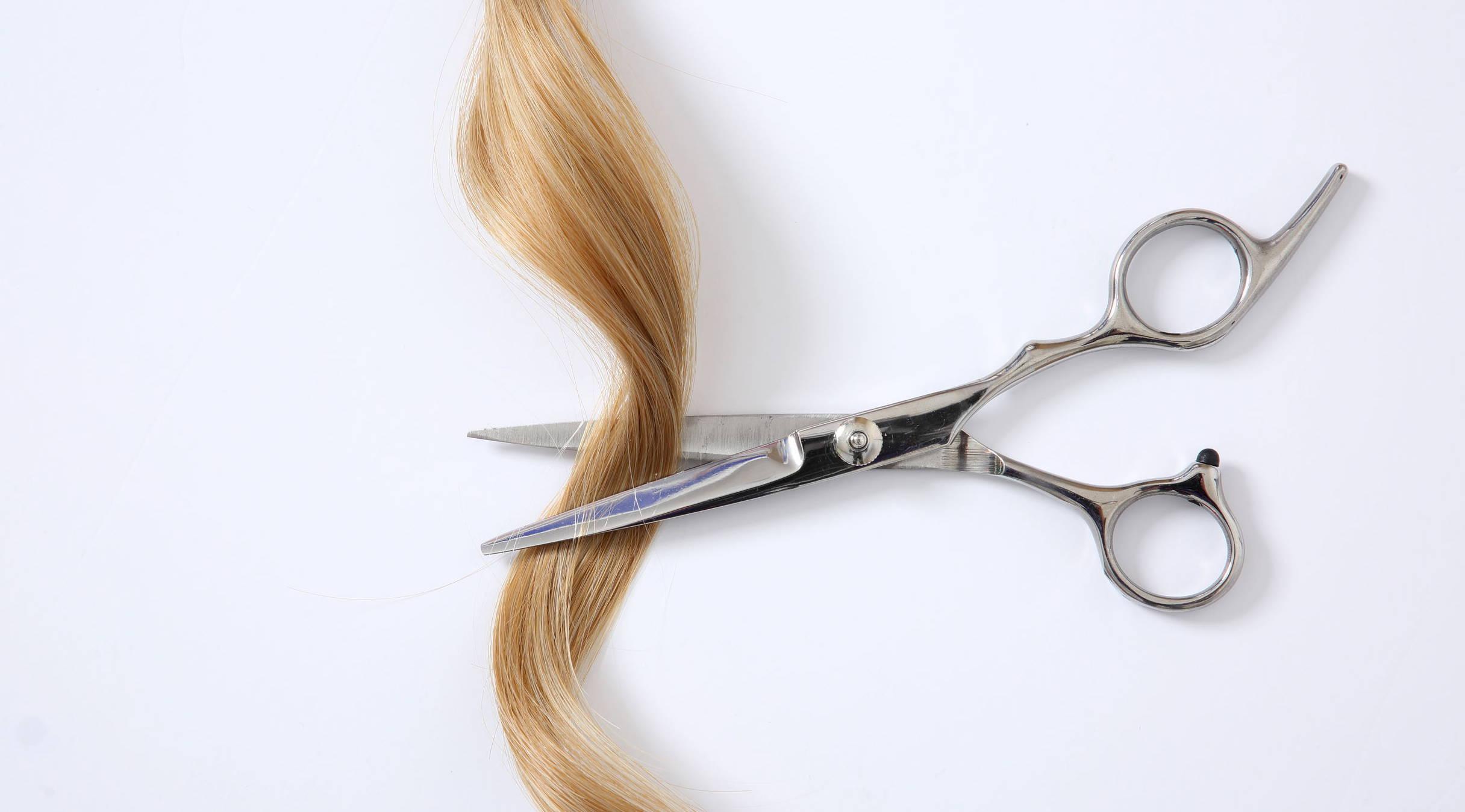 Tremendous Does Cutting Curly Hair Make It Curlier Lus Brands Schematic Wiring Diagrams Amerangerunnerswayorg