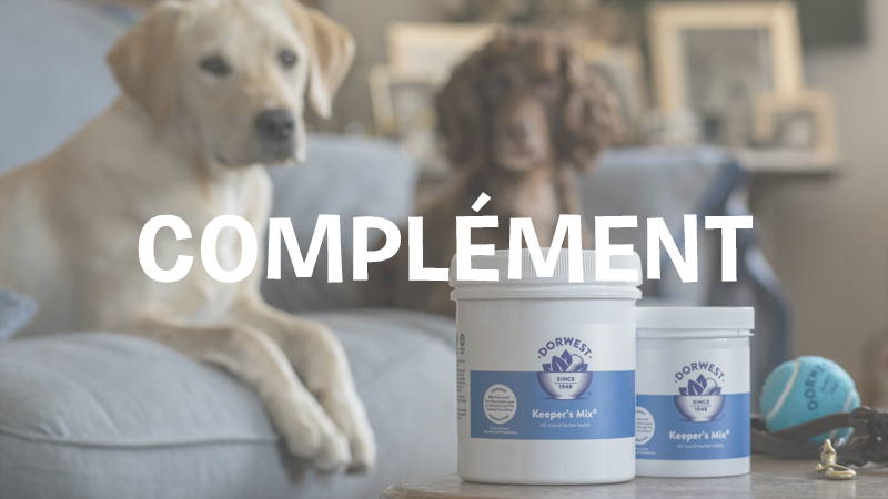 inooko-complement-alimentaire-pour-chien