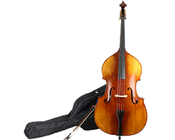 Double bass, bow, and case