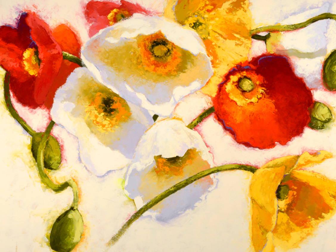 artist - shirley novak
