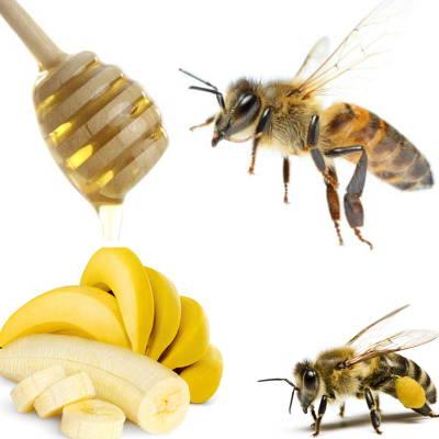 Banana, bees and honey