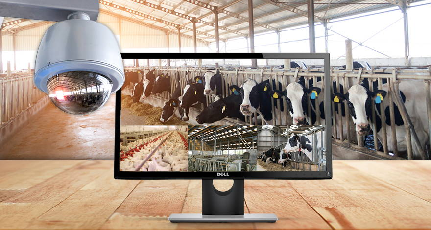 Surveillance Camera Installation | Bax Audio Video