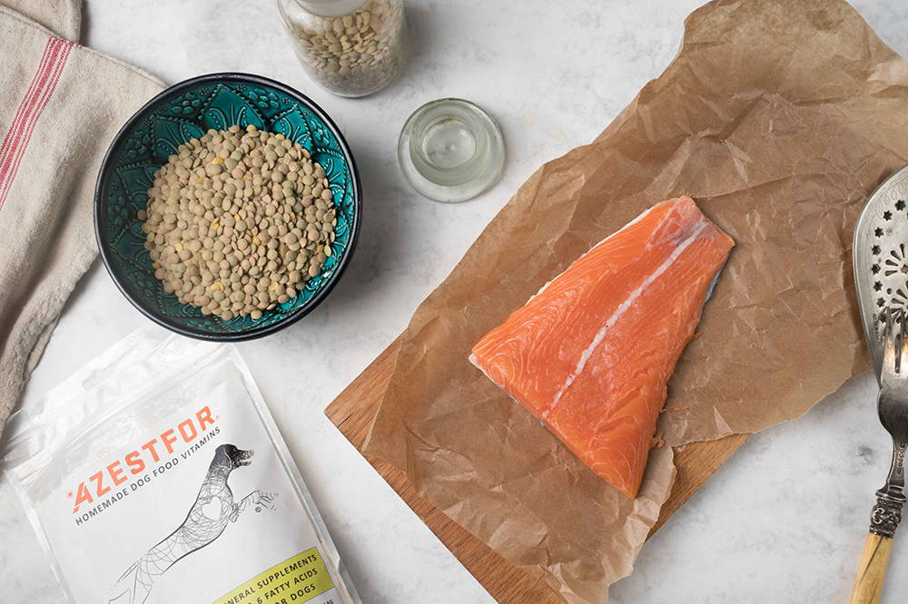 home cooked dog food salmon fish grain free