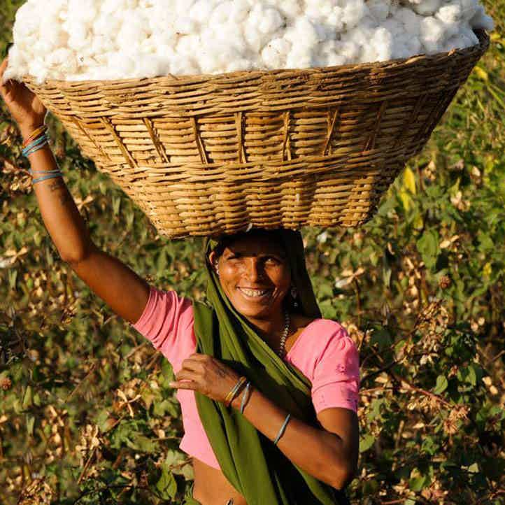 woman farmer in India with basket of cotton on her head | Square Flower