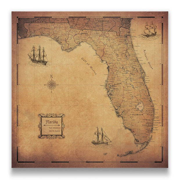 Florida Push pin travel map golden aged