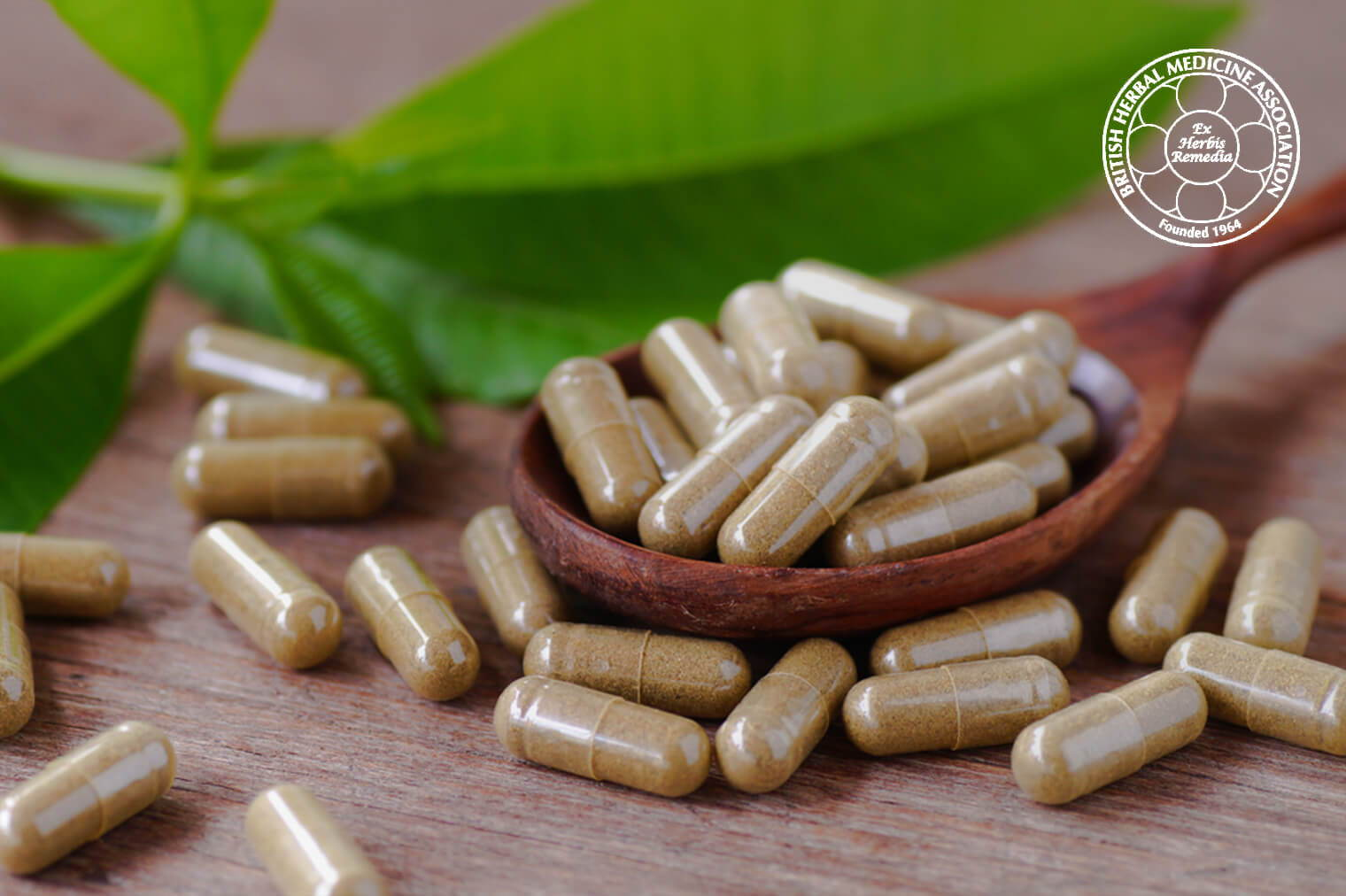 Vitamin Tablets On Spoon