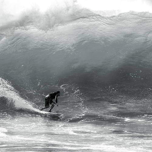 Toxic Surfing