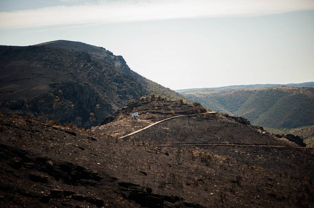 Douro Valley after wildfires in 2017
