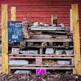 Les matériaux de base utilisés pour fabriquer cet hôtel à insectes sont des palettes en bois, des branches et de la paille.