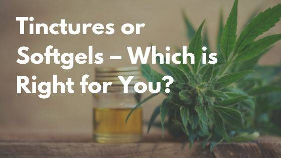 CBD Oil Tinctures Or Softgels - Which Is Best For You