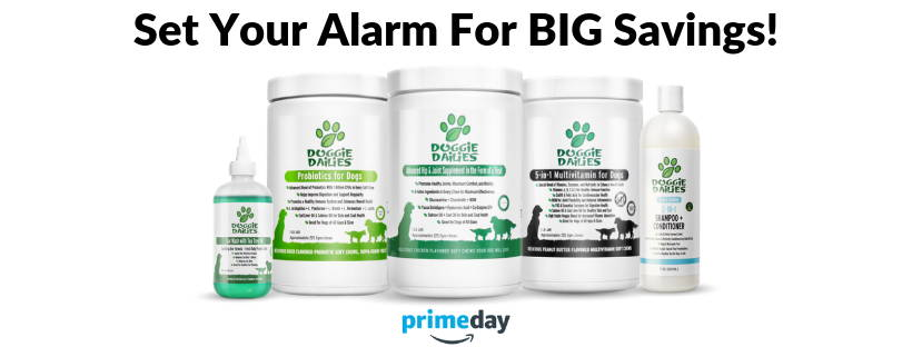 Doggie Dailies Prime Day Deals
