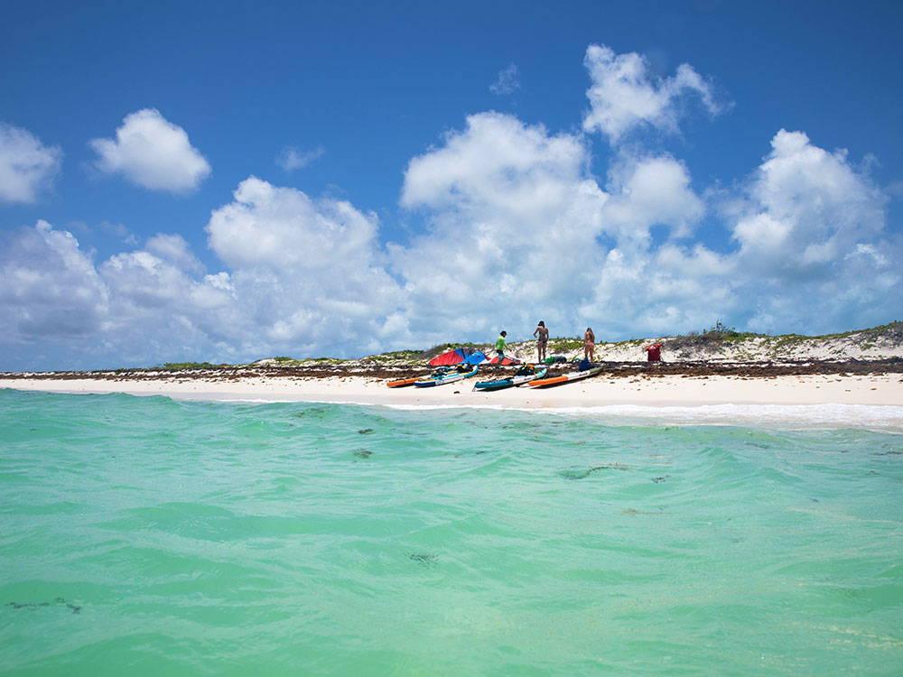 SUPs on a beach
