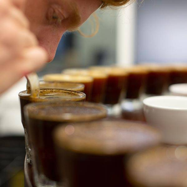 Coffee tasting / cupping