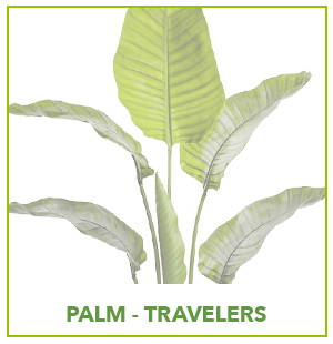 ARTIFICIAL TRAVELERS PALM PLANTS