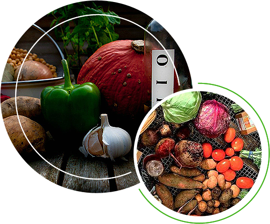 Different kinds of vegetables and spices