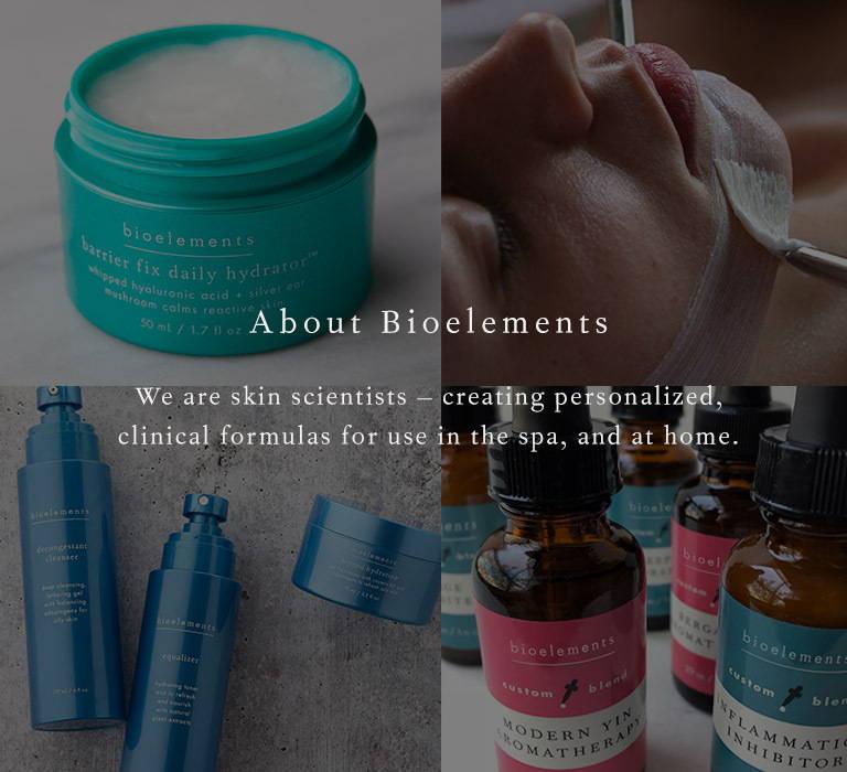 bioelements skin care