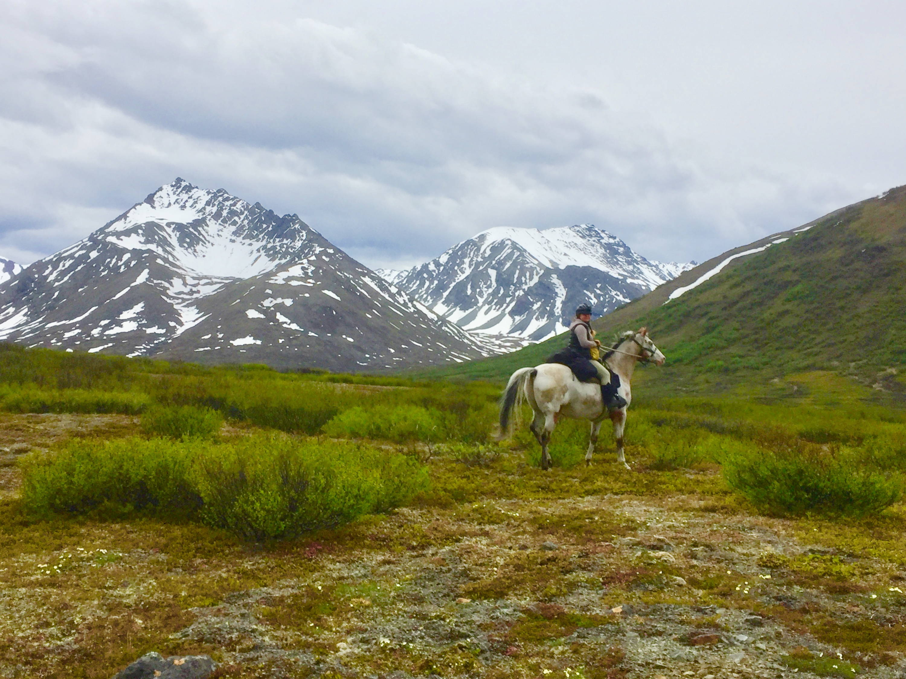 Horse trip into the Clearwater Mountains of Alaska
