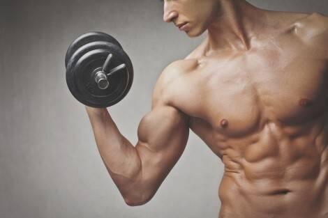Muskelaufbau dank Eiweiß-Diät