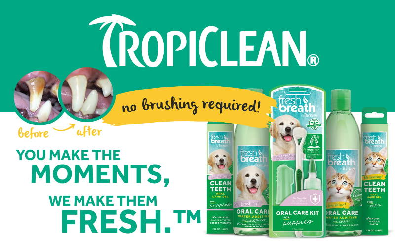 Tropiclean no brushing pet grooming products pawpy kisses singapore