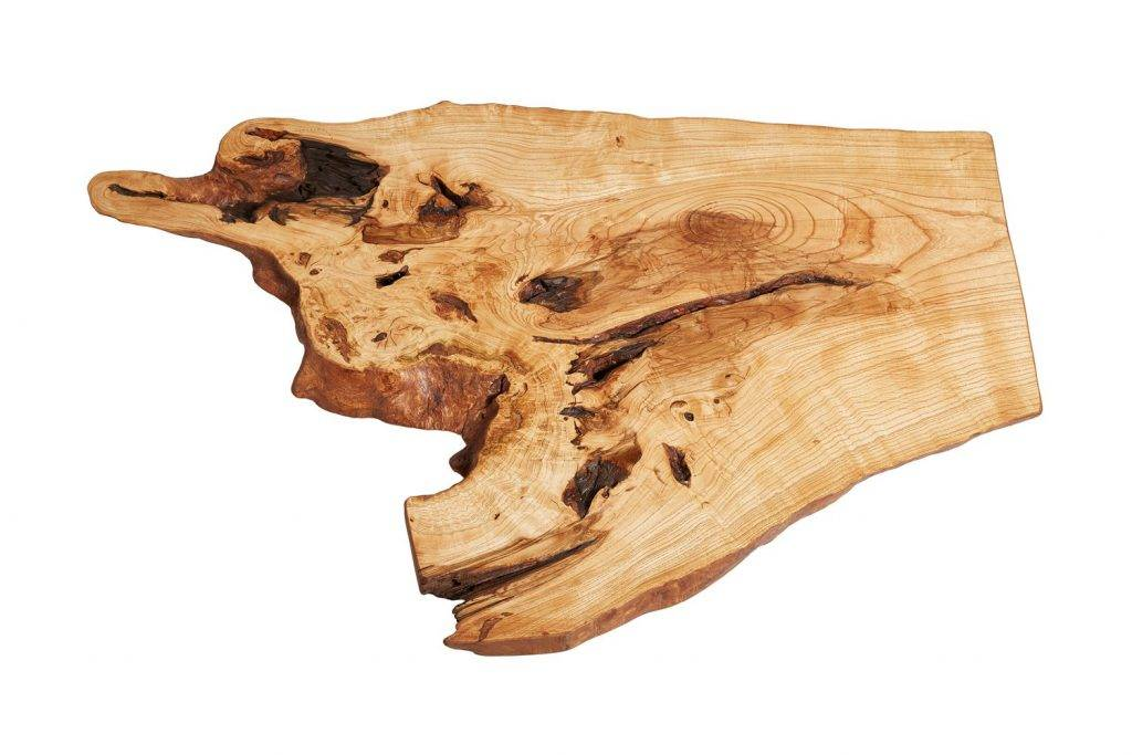 Ash Tree Live Edge Coffee Table by Naturalist