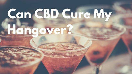 Can CBD Cure My Hangover? Let's Find Out! | Anavii Market