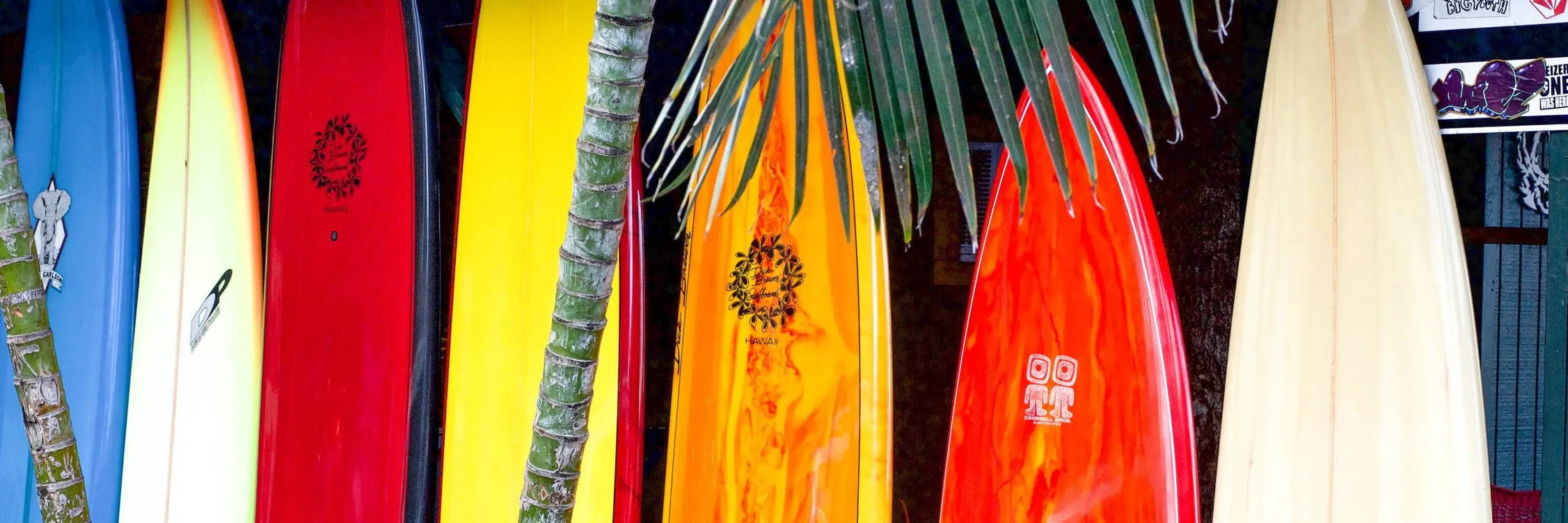A variety of colorful surfboards on a rack