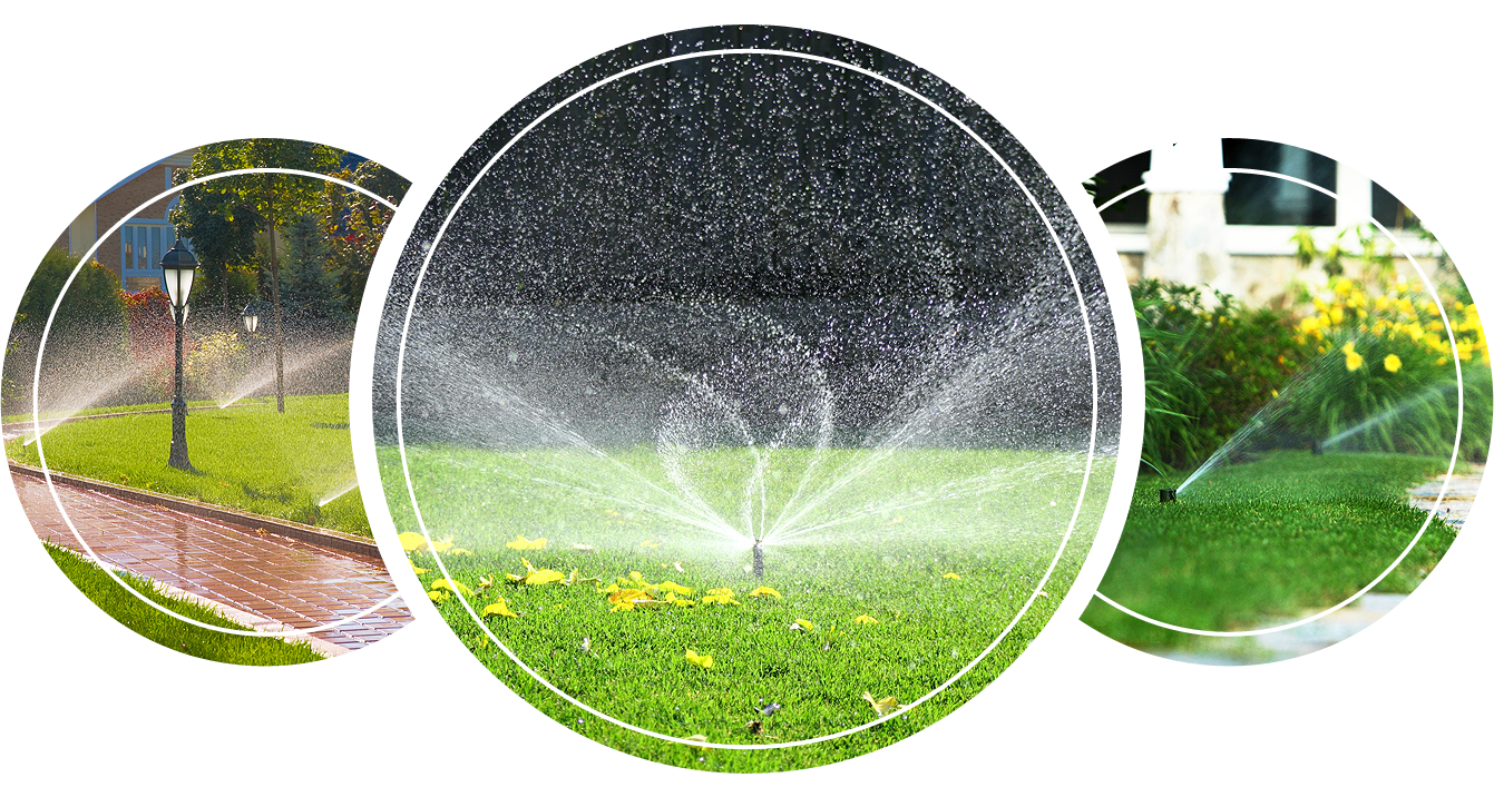 Sprinklers watering the yard