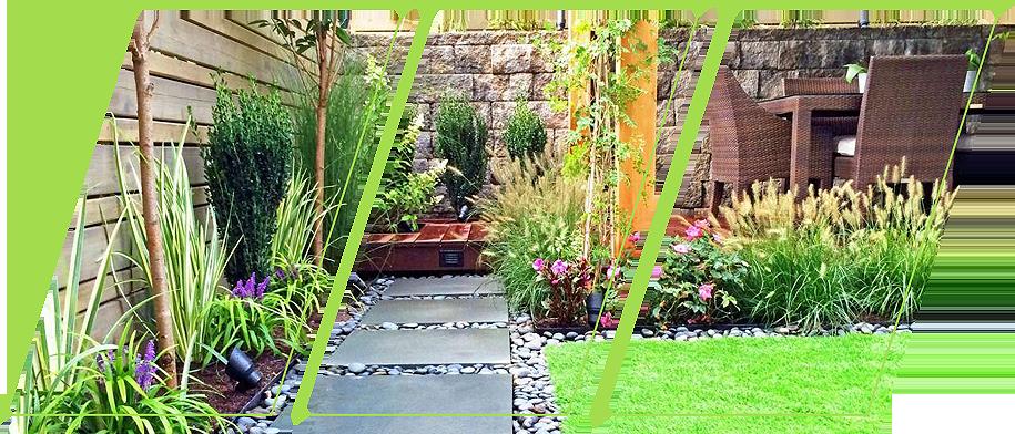 A modern designed garden