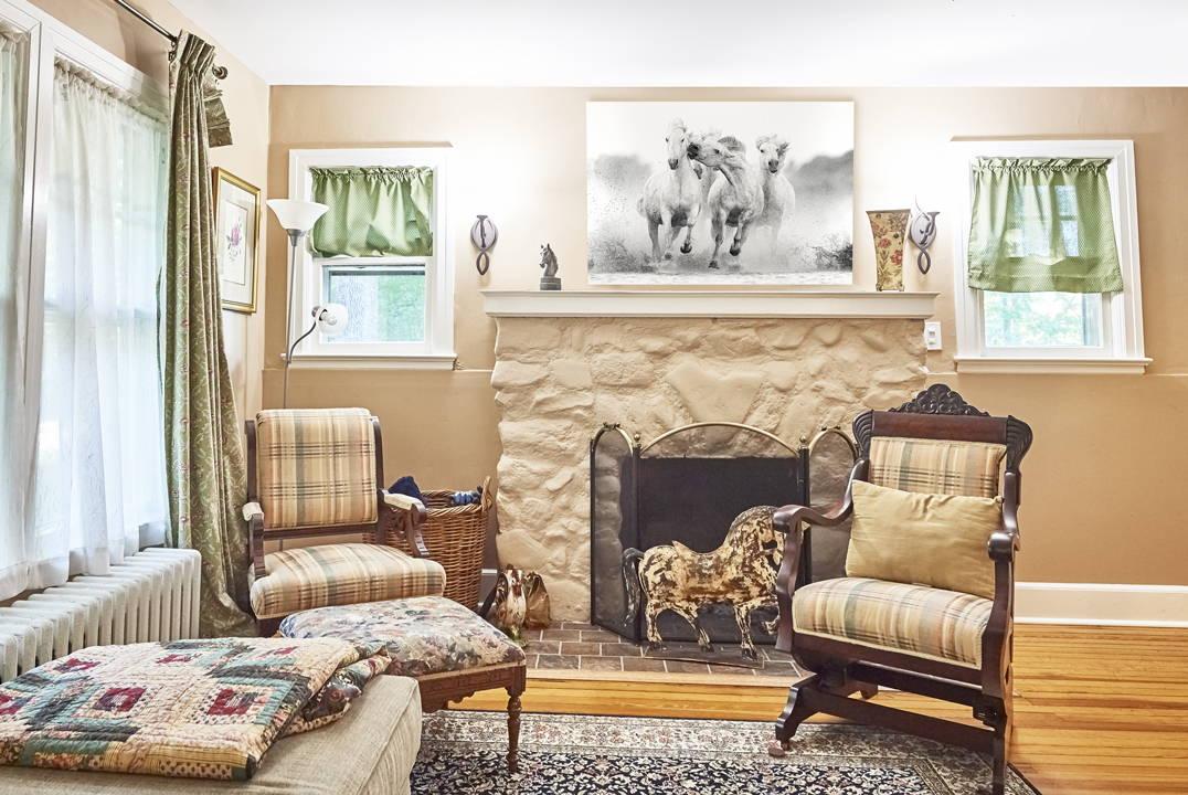 wildlife fine art print in living room home decor