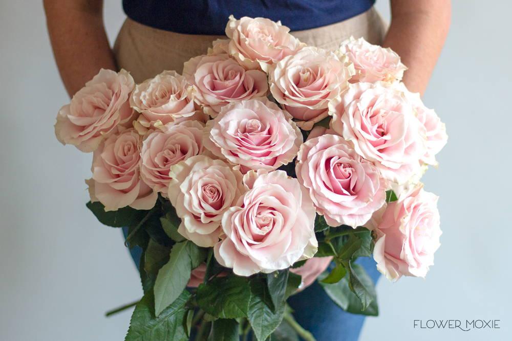 blush pink wedding palette