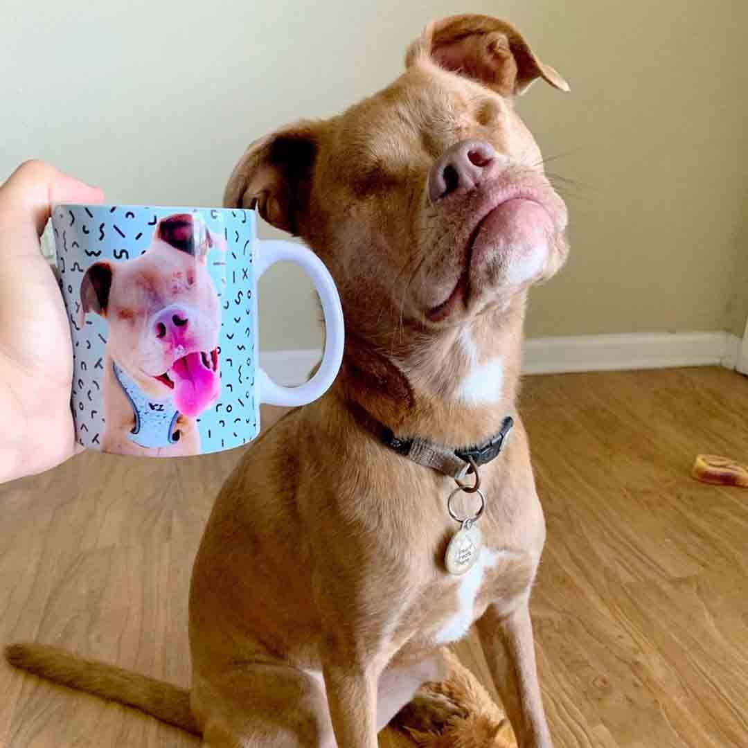 Blind_dog_ custom_printed_mug