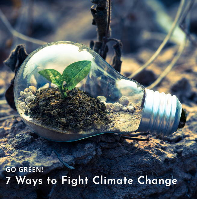 climate-change-ways-to-fight-it
