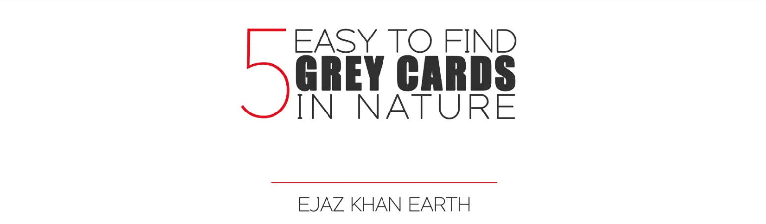Ejaz Khan Earth Wildlife Photography Tips and Tutorial