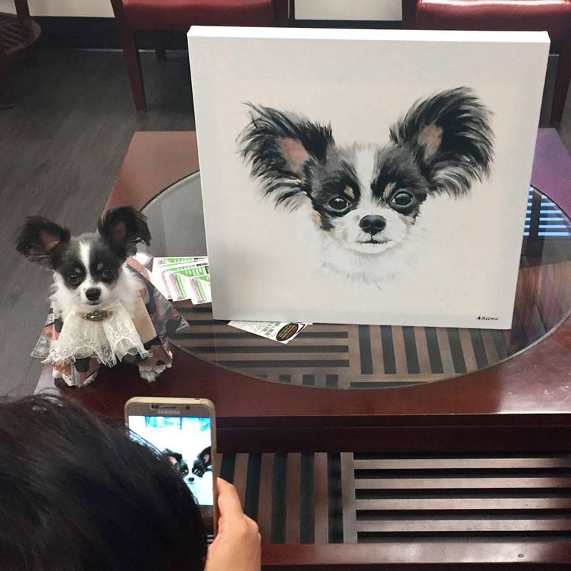 e8c2e1bcf078 Pet Portraits - MyPoochFace