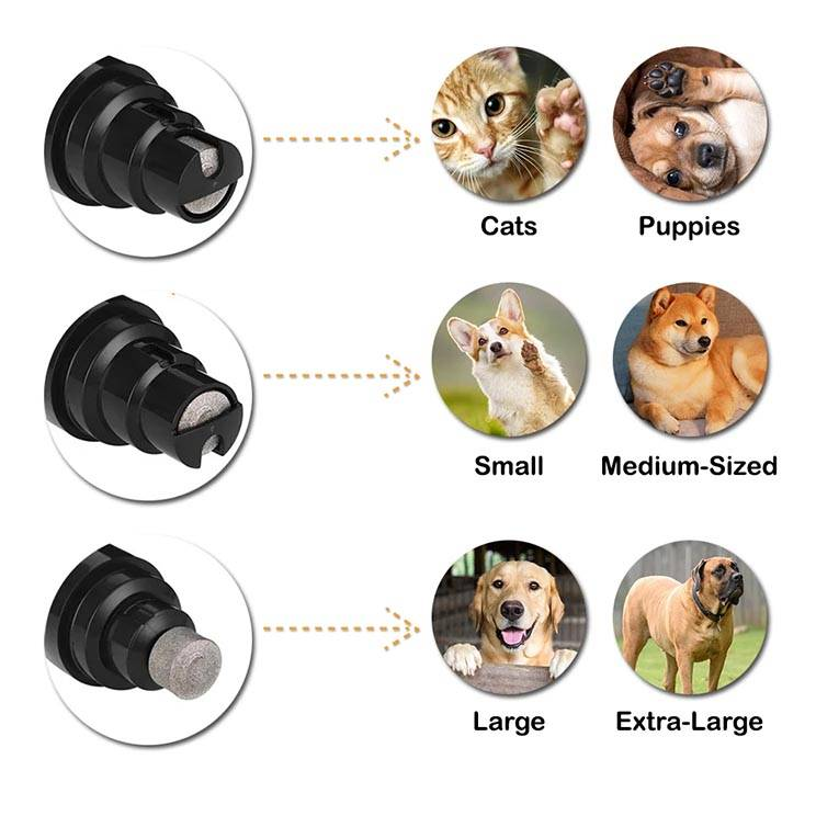 Nail Grinding Dog Size, Pet Nail Grinding For Small Dogs