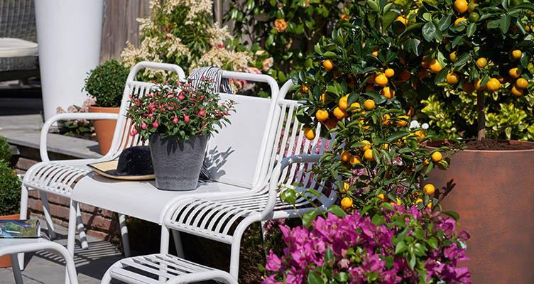 Outdoor life: Choose your garden trend