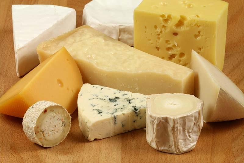 Beginner Cheese Maker FAQ | How to Make Cheese