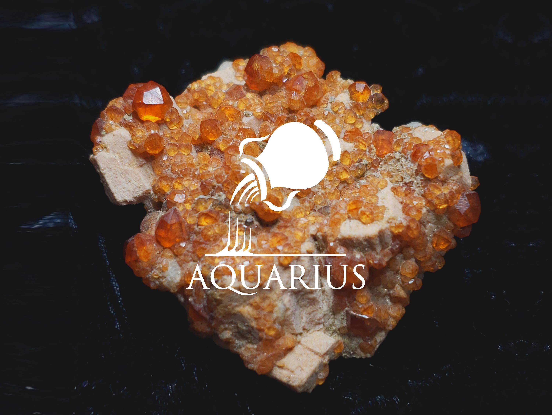 Aquarius Garnet