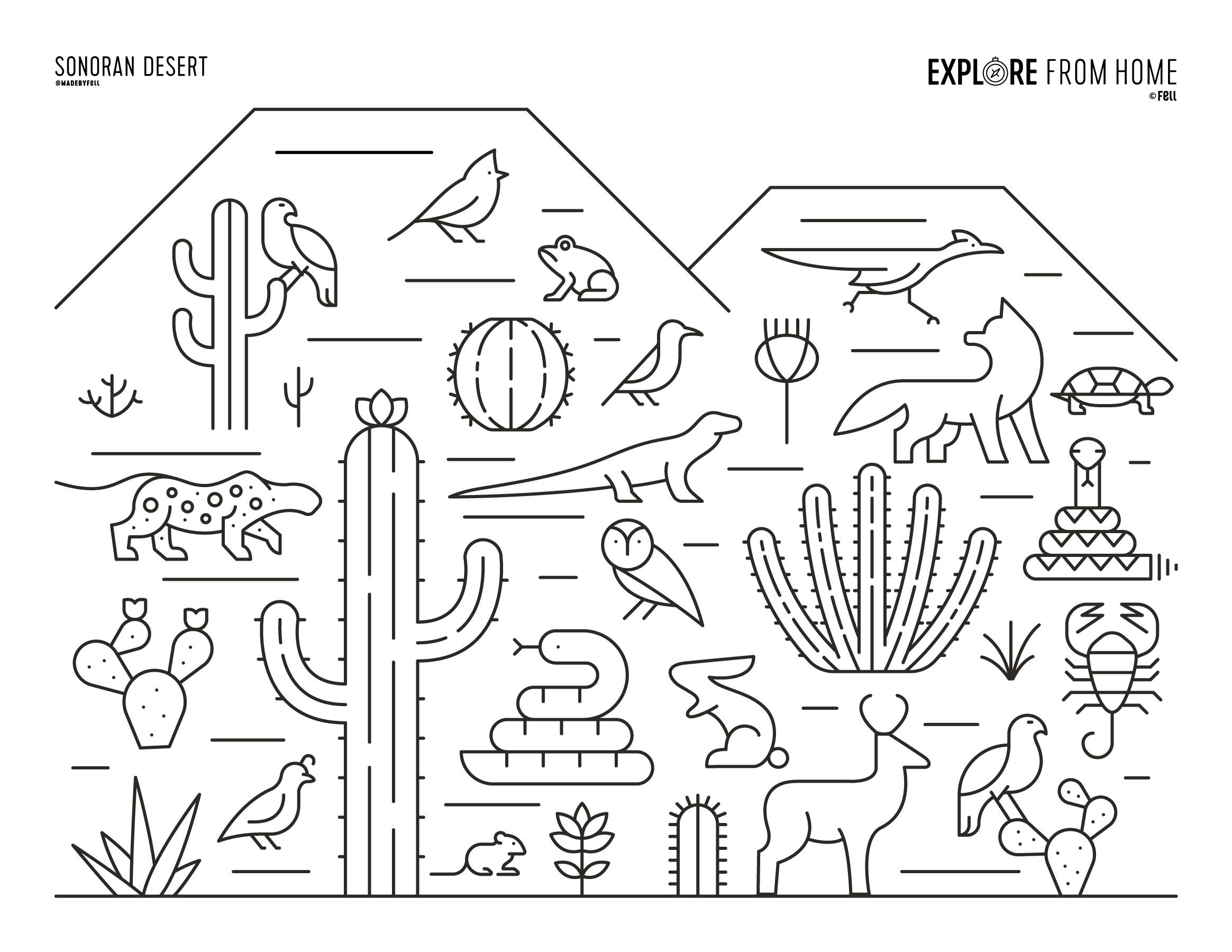 Free Free Biome Coloring Pages, Download Free Clip Art, Free Clip ... | 1800x2329