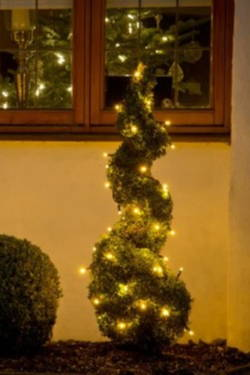 Low Voltage Christmas Lights.5 Reasons Why You Should Buy Low Voltage Christmas Lights