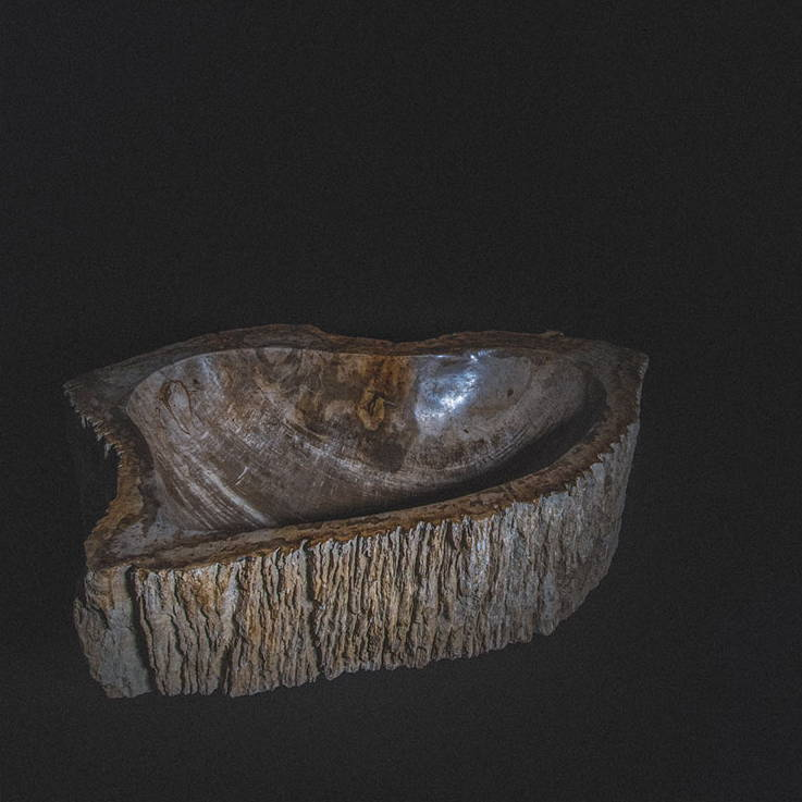 Quarry Imports Petrified Wood Sink © 2019 Quarry Imports LTD. - All Rights reserved.