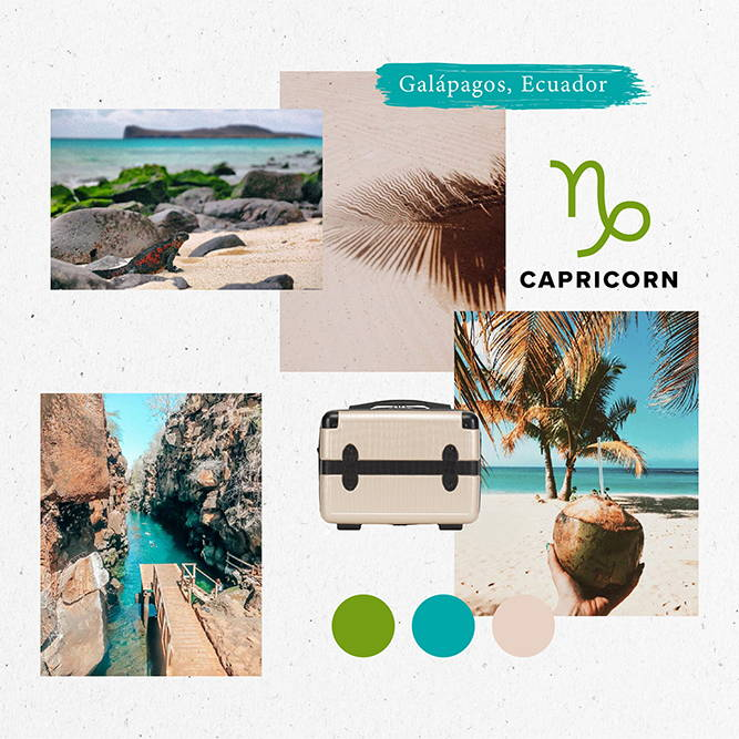 Horoscope, 2020, Travel, capricorn, galapagos, ecuador, vanity case