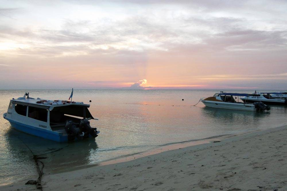 Travelbay Borneo Tours - Neil & Fiona in Borneo - Customer Review - Selingan Island