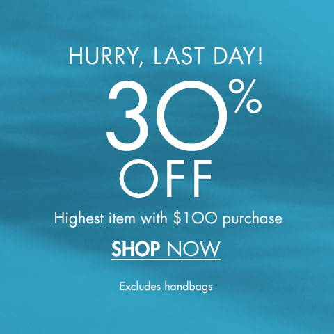30% Off Highest Item with $100 purchase