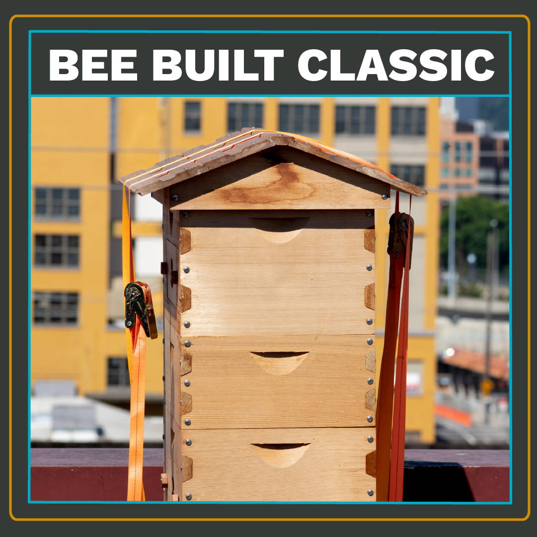 A Bee Built Classic Deep Langstroth beehive.