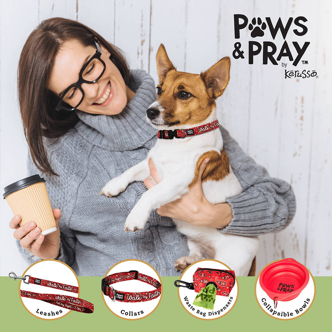 Wholesale Pet Accessories Products Christian Pet Leashes Collars Waste Bags Bowls