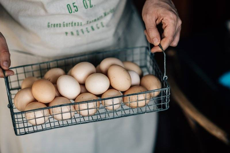 Picture of person carrying eggs